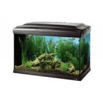 Acquario Cayman 60 Professional Nero FERPLAST